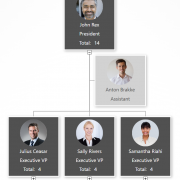 Best org chart software review example