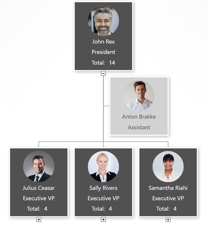 org chart design simple gray example