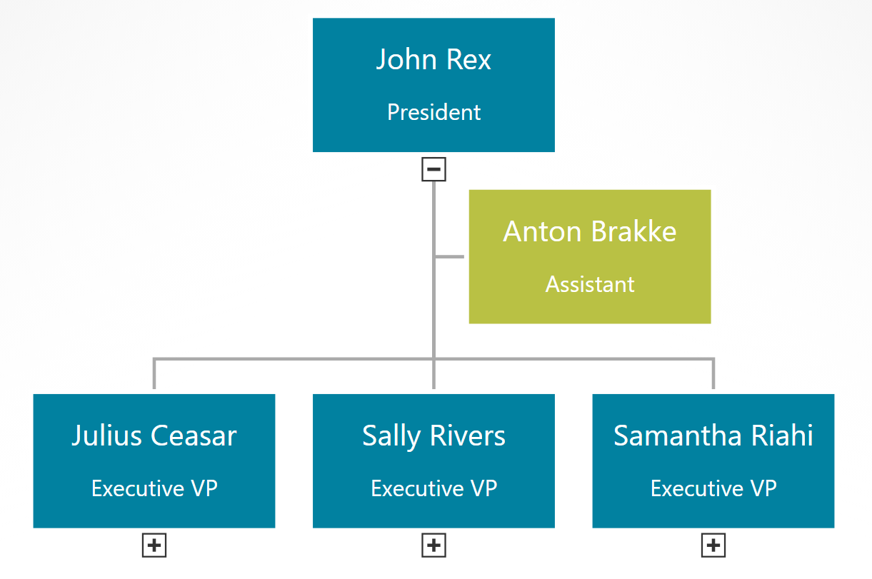 org chart design branded example